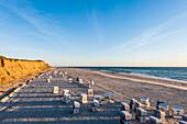 Strandkörbe am Strand, Rotes Kliff, Kampen, Sylt, Schleswig-Holstein, Deutschland