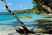 Rainforest meets beach, Elephant Beach with boats, Havelock Island, Andaman Islands, India