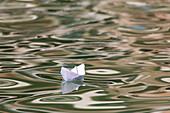 Papierschiff, weiss, gefaltetes Papierboot auf Wellen im Canal Grande, Venedig, Italien