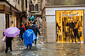 Tourists with umbrellas and plastic covered shoes, rubber boots,  Acqua alta,  fashion shop near  St Mark's Square, San Marco, high water caused by Sirocco wind and full moon, rain in Venice, Italy