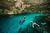 Cenote diving and views at Dos Ojos Cenote, Yucatan Peninsula, Mexico.