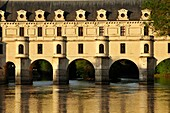 France, Indre et Loire, Loire Valley, castle of Chenonceau, built between 1513 - 1521 in Renaissance style, over the Cher river,.
