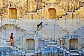 India, Rajasthan, Jaipur the Pink city, water tank for rain near Jaipur.