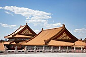 Roofs in Forbidden city.