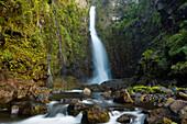 Hawaii, Maui, Nahiku, Hanawi Falls And Stream In Lush Valley.
