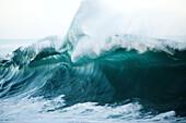 Hawaii, Large Wave In Hawaii.
