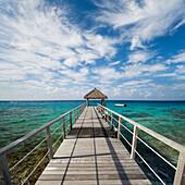French Polynesia, Tuamotu Islands, Rangiroa Atoll, Seascape Of Pier Over Ocean.