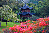 Hawaii, Lanai, Classic Japanese Pagoda On The Ground Of The Four Seanson's Koele Resort.