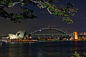 Australia, Sydney, View Of The Harbor Bridge And Opera House, Foliage In Foreground.