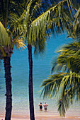 Hawaii, Maui, Wailea, Mokapu Beach, Senior Couple Stands Knee Deep In Water Looking Out At Ocean, Palm Trees Surround.
