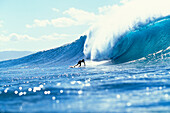 Hawaii, Oahu, North Shore, Banzai Pipeline, Pancho Sullivan Riding Wave