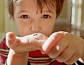 Young Boy Holding An Insect In His Hand, King City, Ontario