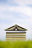 Books On Lawn Stacked In Shape Of A House