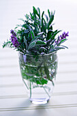 Mixed Herbs In A Small Vase