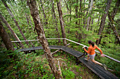 Woman Runs The Perseverance Trail In The Tongass National Forest Near Ketchikan, Alaska
