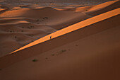 'Morocco, Man walking up large sand dune in Erg Chebbi area; Sahara Desert near Merzouga'