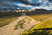 'Braided river flowing out of the Alaska range, Polychrome mountain, Denali National Park; Alaska, United States of America'