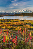 'Mt. McKinley and Wonder Lake, Denali National Park; Alaska, United States of America'