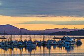 'Fishing vessels in the Sitka Channel, coastal town of Sitka; Sitka, Alaska, United States of America'