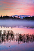Morning fog at sunrise over Willow lake, Wrangell-St. Elias National Park and Preserve, Southcentral Alaska.