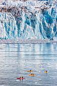 Sea Kayakers paddle in Barry Arm, near the face of Cascade glacier, Prince William Sound, southcentral, Alaska.