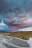 Evening clouds lit by pink light over the Savage river in Denali National Park, Interior Alaska