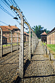 'Barbed wire fences with cell blocks and guard tower in Auschwitz concentration camp; Osweciem, Poland'