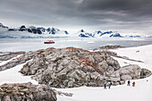 'Tourists from the Polar Star hike on Peterman Island, Western Antarctic Peninsula; Antarctica'