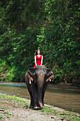 'Girl riding an elephant; Chiang Mai, Thailand'