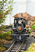 'Model g-gauge steam locomotive moves along track of garden railway exhibit at the Conservatory of Flowers, Golden Gate Park; San Francisco, California, United States of America'