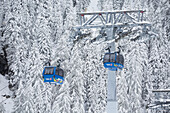 'Gondolas with tower and cables with snow covered trees on mountain slope in the background; Hintertux, Austria'