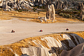 'Tourists ride on all-terrain vehicles down a road in Rose Valley; Cappadocia, Turkey'