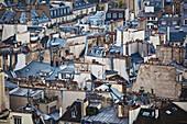 'Cityscape of residential buildings; Paris, France'