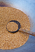 'A spoon in a bowl of grain; Ulpotha, Embogama, Sri Lanka'