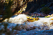 Arizona, Grand Canyon National Park, Man rafting on the Colorado River, Large rapids. EDITORIAL USE ONLY.