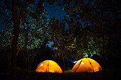 'Tents pitched under the trees, camping at night; Ethiopia'