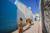 'A young girl walking through the colourful streets of the old City of Harar in Eastern Ethiopia; Harar, Ethiopia'