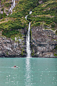 Waterfall spilling over a cliff into Passage canal with a small boat in the foreground, Prince William Sound, Whittier Southcentral Alaska, USA.