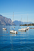 'Boats moored in a harbour of Lake Garda; Malcesine, Verona, Italy'