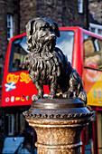 'Dog statue of Greyfriars Bobby; Edinburgh, Scotland'
