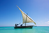'Raising the sail on a boat on the Indian Ocean; Vamizi Island, Mozambique'