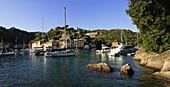 'Boats in the harbour; Portofino, Liguria, Italy'