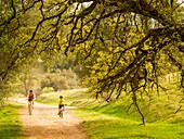 Mom and Son bike ride through oaks