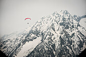 Paraglider flying down from Monte Rosa. Macugnaga, Ossola, Italy.