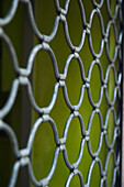 'Chain link fence and a green wall; Barcelona, Spain'