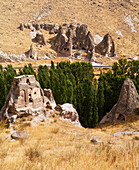 'Fairy chimneys and trees in an arid landscape; Goreme, Cappadocia, Turkey'