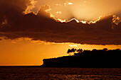Hawaii, Lanai, Bright orange sunset and silhouetted palm trees, View from Manele Bay.