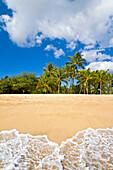 Hawaii, Lanai, Manele Bay, Hulopoe BEach, Palm trees line sandy coast.