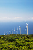 'The Auwahi Wind Farm in Kaupo; Maui, Hawaii, United States of America'