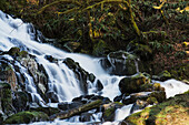 'Fishhawk Falls is found at Lee Wooden County Park; Jewell, Oregon, United States of America'